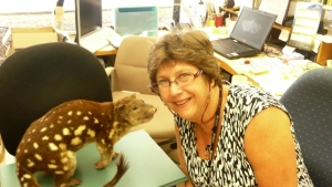 A picture of Quentin the Quoll and QM entomologist Dr. Christine Lambkin